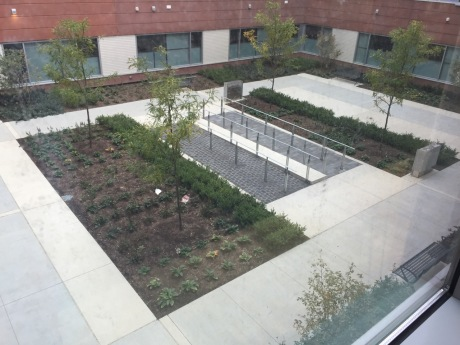 OUTDOOR SANCTUARY:  This is one of the courtyard/healing gardens at the hospital.  This one has heated concrete to reduce snow and ice buildup in the winter.