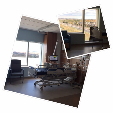 ROOM WITH A VIEW:  Research shows that access to nature and natural light have a positive impact on healing. A large patient window with a sill that drops down to the floor gives patients the ability to connect with the outdoors without getting out of bed.